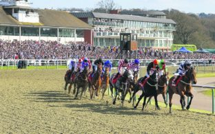 ARC Horse Racing Prize Money