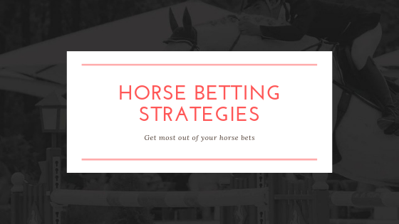 horse betting strategies